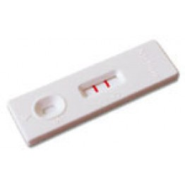 Home Cannabis Test Strip Kit