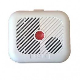 WiFi/Networking Camera in Smoke Alarm